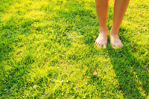 Woman feet on the green grass in morning