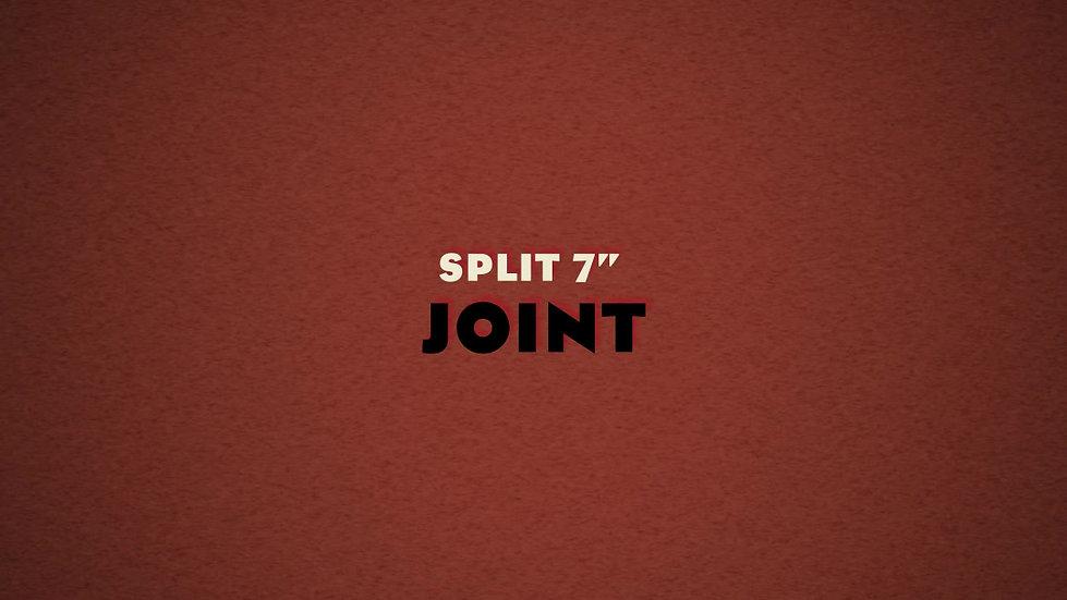 """JOINT: Split Disorder/The Babes 7"""" colour vinyl"""