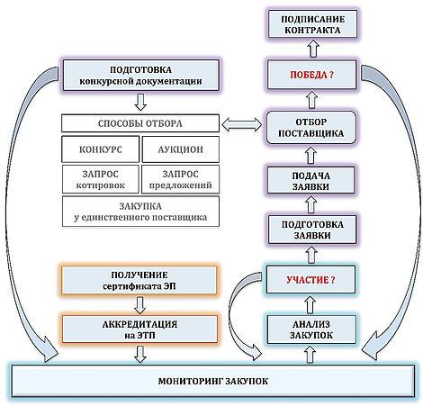 Основные опции и последовательность действий тендерного сопровождения