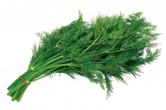 Укроп зеленый 50 гр.