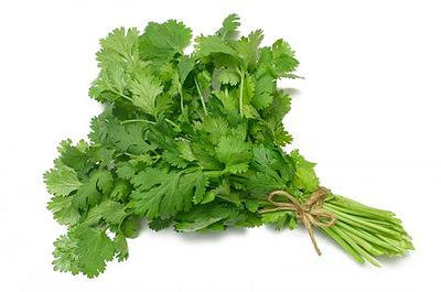 Кинза зеленая 50 гр.