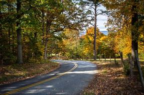 Driving in Virginia
