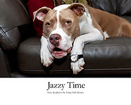 Jazzy Time cover.jpg