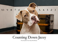 Counting Down Jazzy cover.jpg