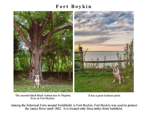 Fort Boykin.jpg