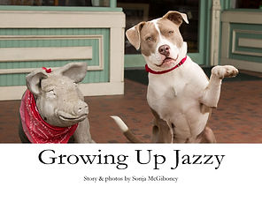 V2 Grow Up Jazzy cover.jpg