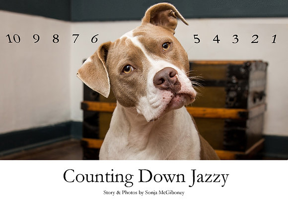 Counting Down Jazzy