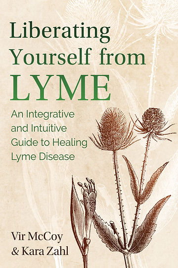 Liberating From Lyme Book Cover.jpg