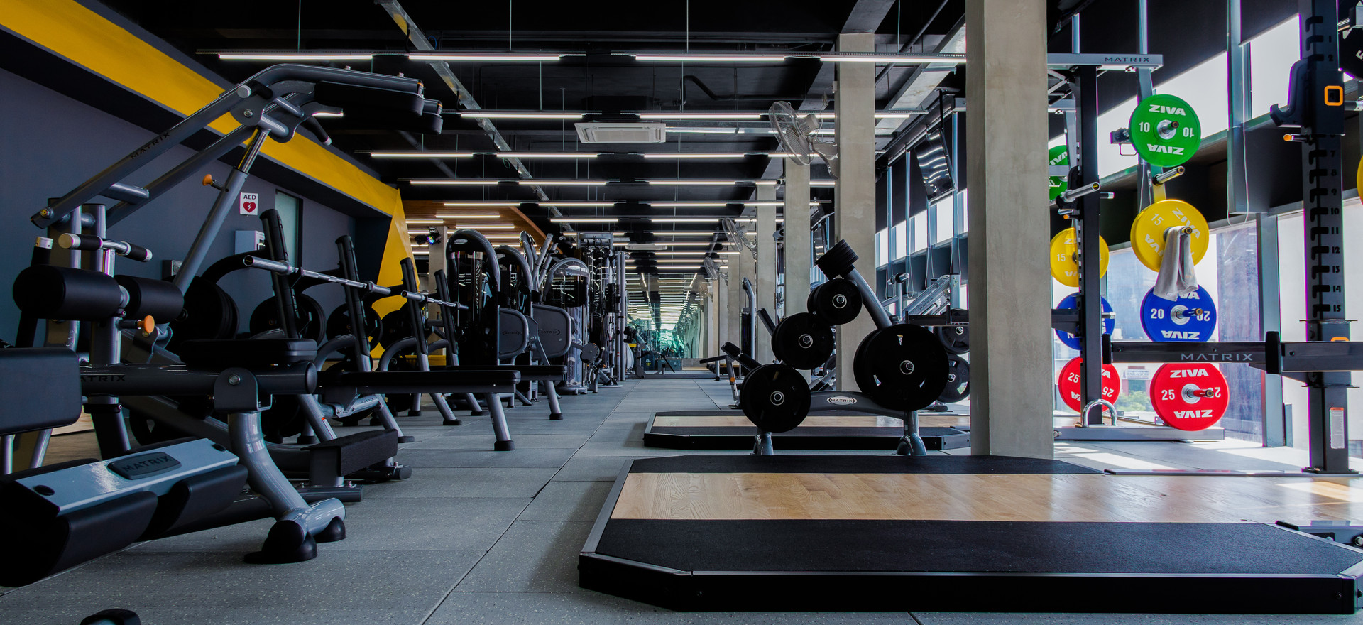 Rise Fitness Project 2019