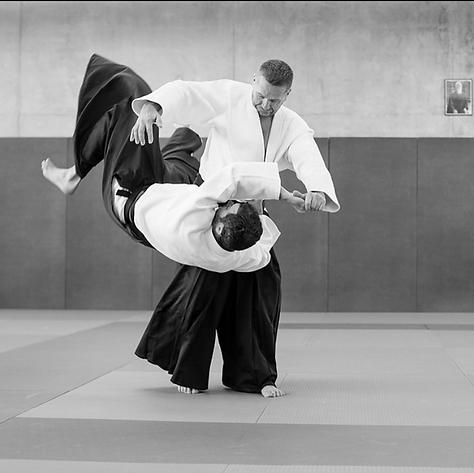 Ligue Auvergne Rhône Alpes d'Aikido et de budo, FFAB, Tamura senseï.png