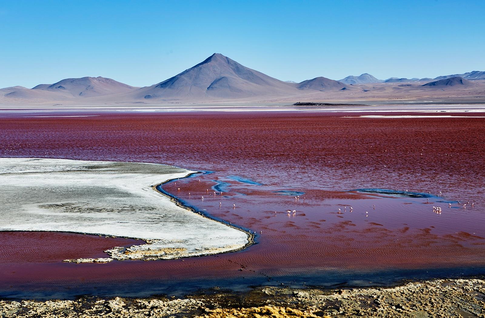 Laguna Roja, Bolivia