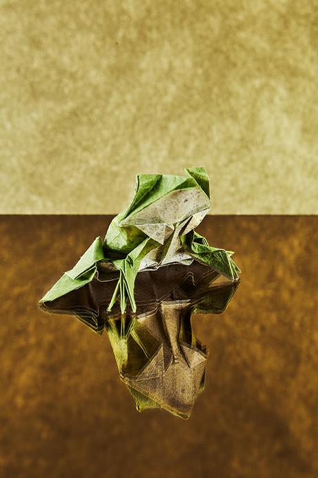 Origami2815.jpg