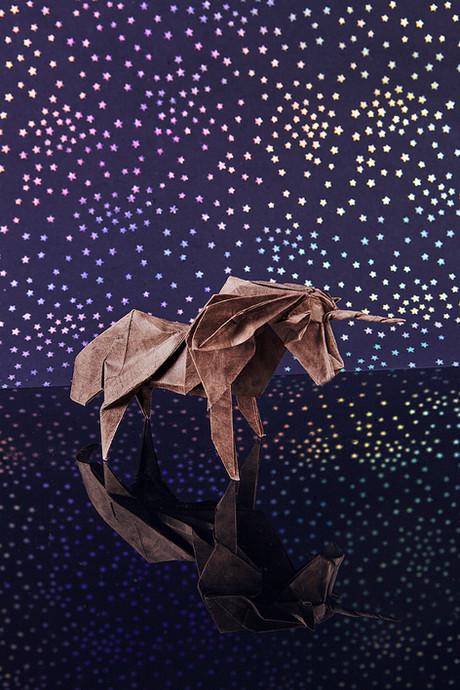 Origami2879.jpg