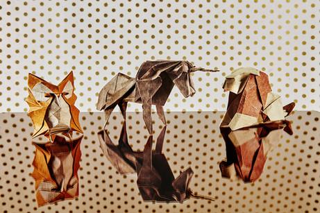 Origami2889.jpg