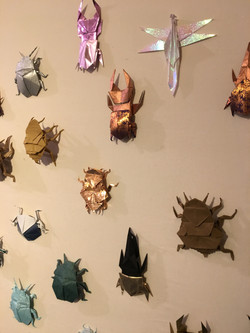 Origami Insects