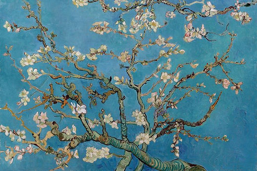 Cherry Blossoms - Van Goch.jpeg