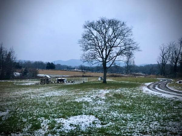 winter snow scene.jpg