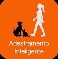Adestramento de Cães e Gatos Campinas