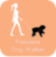 Dog Walker Campinas