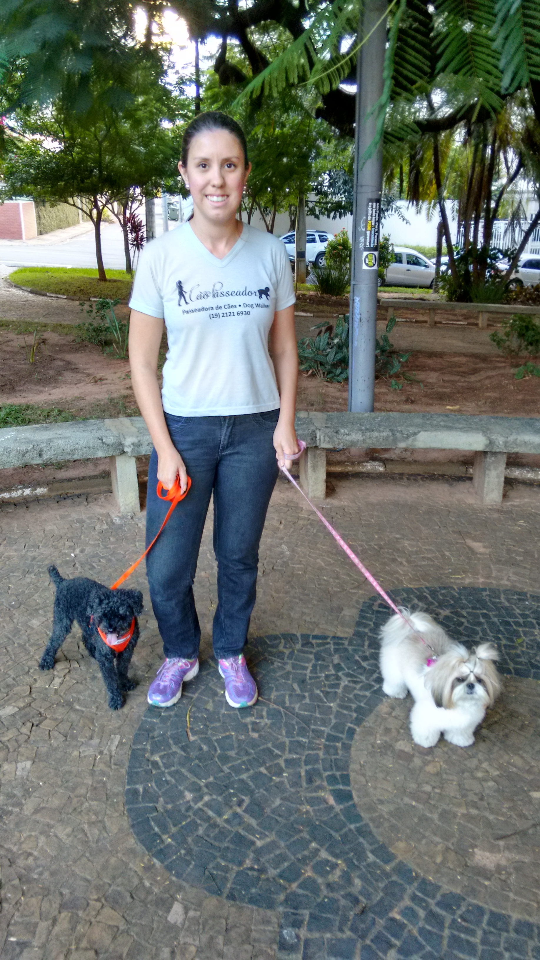 Cão Passeador - Dog Walker