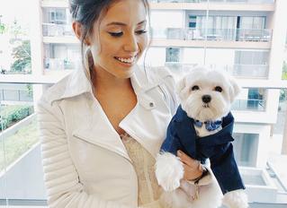Quer levar seu cachorro para o casamento? Reunimos dicas para incluir o pet na cerimônia