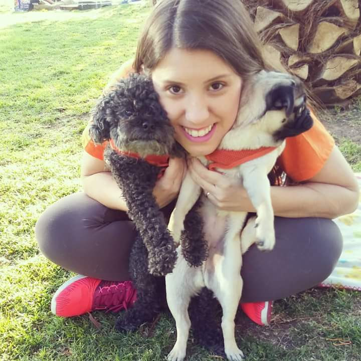 Cão Passeador - Santiago Chile
