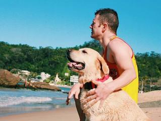 Primeiro cachorro salva-vidas do Brasil começa a 'trabalhar' em praia de SC