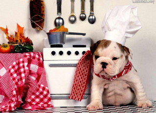 Receita de Cupcake especial para cachorro
