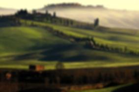 salitapalaia-1024x680.jpg
