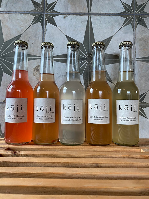 Mixed Fermented Drinks (x5)