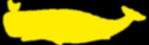 kuckuck walvis