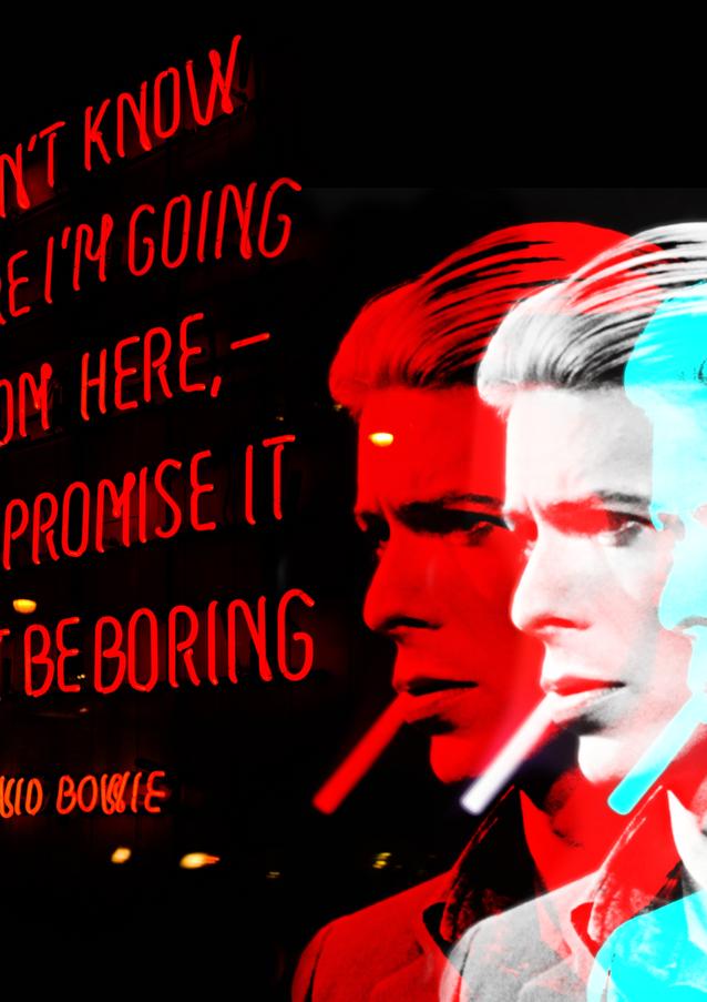 David Bowies