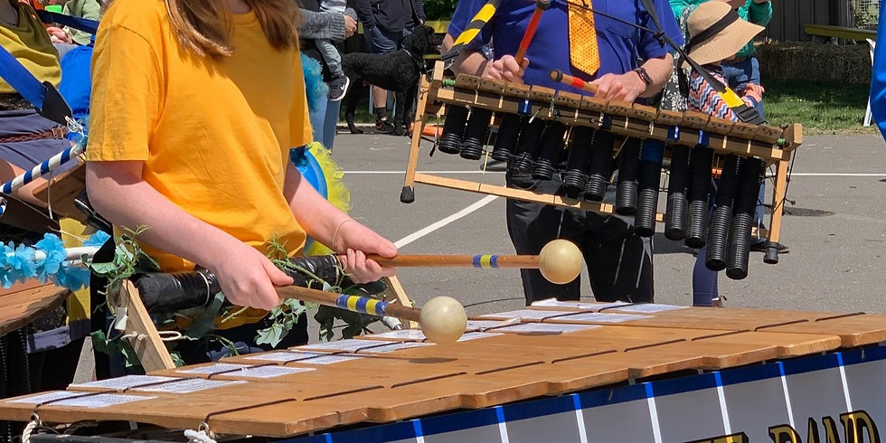 Play It- Learn to Play a Marimba II