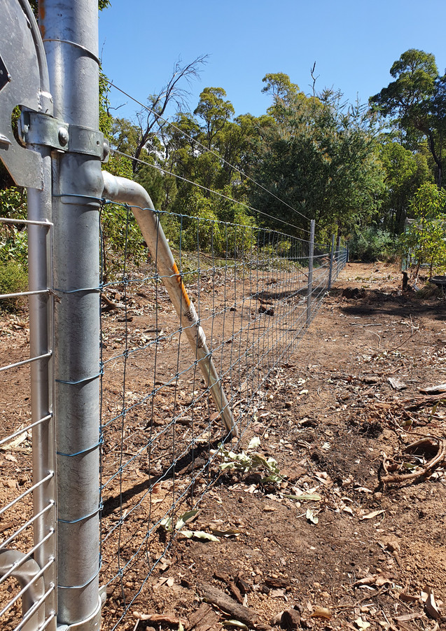 Complete Galvanized Farm Fence