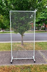 Single rectangular mesh.jpg