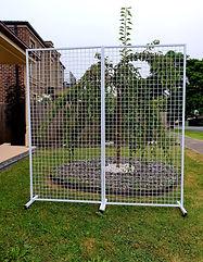 Double rectangular mesh.jpg