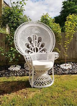 Peacocok Chair.jpg