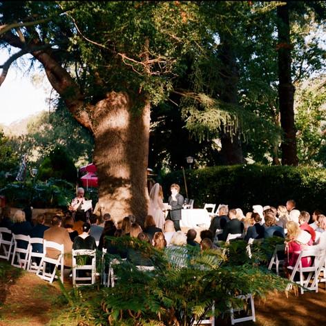 Ceremonny chairs.jpg