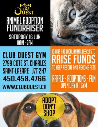 Animal adoption fundraiser