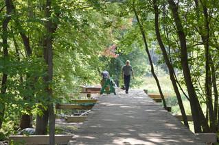 Rebuilding the bridge in Hudson's Jack Layton Park