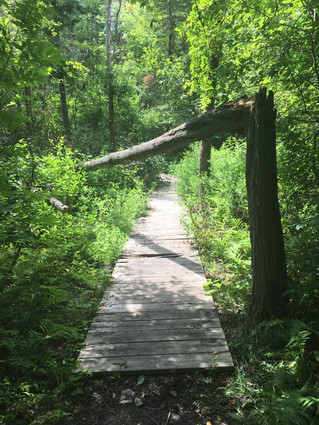 Hudson hiking trails require maintenance and roads need paving