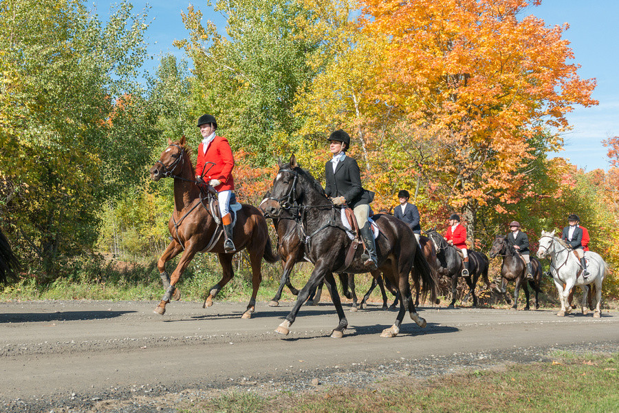 PHOTO BY HEATHER SWAN With the full support of local landowners, members of The Lake of Two Mountains Hunt Club including Sophie Maheo and David Anderson, in front and shown here on a beautiful fall day in the Ste. Anne de Prescott region, carry on a tradition dating back to 1946.
