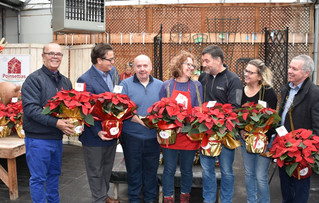 Annual Poinsettia Campaign blossoms to new heights