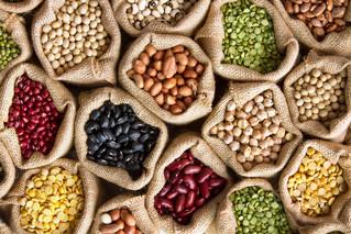 Vegetable Seed Saving