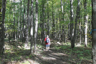 Development on Mont Rigaud deemed a necessary part of conservation