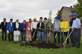 Sikh community plants trees to celebrate 550th anniversary and save the planet