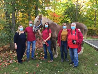 Horse pays patients a visit