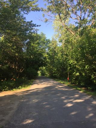 Large Hudson subdivision pushing forward