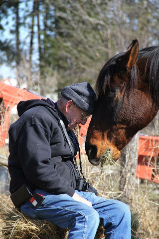 Help AHT make another happy horse tale