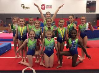 Regional gymnastics, tennis, and baseball action